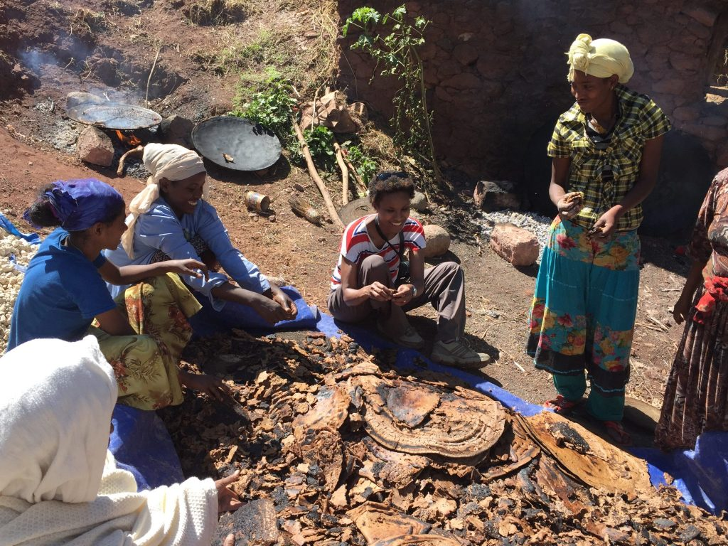 Dr Mire believes one of the most exciting research areas of the history of the Horn of Africa is the origin of food production, including festive drinks like the one being prepared for the New Year at Lalibela, Ethiopia, Christmas 2015